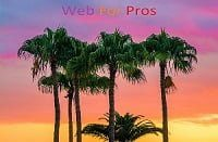 Web For Pros